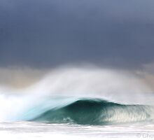 Slow wave by Chester  Lewis