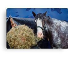 Eat Your Roughage Canvas Print