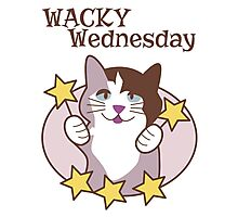 Wacky Wednesday Days of the Week Cat Photographic Print