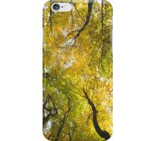 Autumn Glory iPhone Case/Skin