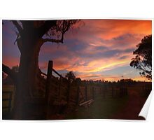 Crows Nest Sunset Poster