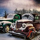 Old Trucks in HDR#10 by peaceofthenorth