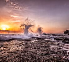 Splash by Adriano Carrideo