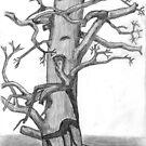The Lone Tree by Gëzim Geci
