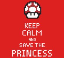 Keep Calm And Save The Princess by Seignemartin