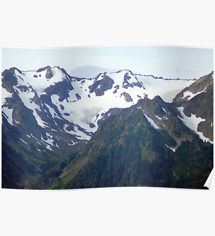 Olympic Mountains from Hurricane Ridge Poster