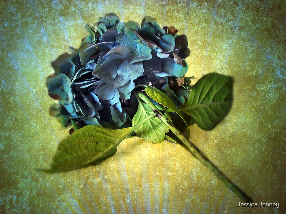 Winter Hydrangea by Jessica Jenney