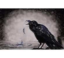 Raven Wish Photographic Print
