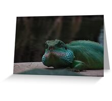 Lizard Iguana Reptile Dragon Greeting Card
