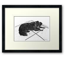 Bess - Boarder Collie Framed Print