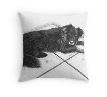Bess - Boarder Collie Throw Pillow