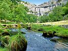 Below Malham Cove by Colin  Williams Photography
