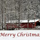 Merry Christmas Card by Penny Rinker