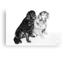 Charlie and Alfie - Golden Retrievers Canvas Print