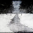 frozen river by studena