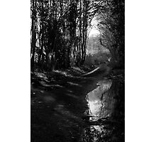 Reflected Country Lane Photographic Print