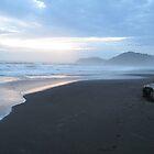 Pura Vida Sunset by KimSha