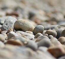 Pebbles on the Beach by Gary Turney