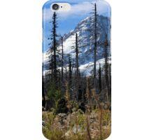 Mt. Hood Oregon iPhone Case/Skin