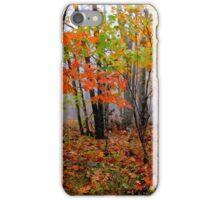 Arkansas Stix iPhone Case/Skin