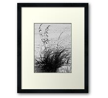 The Colors Of Photography ~ Part Forty-Two Framed Print