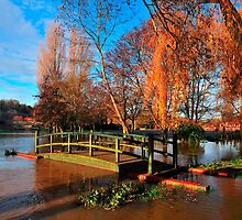 Floating Bridge - Blandford Forum by delros