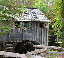Cable Mills Grist Mill II - Cades Cove Tennessee by Tony Wilder
