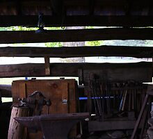 Barn - Cades Cove Tennessee by Tony Wilder
