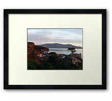 The Lone Cypress 4 Framed Print