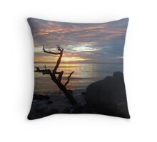 Reach for the Sky 2 Throw Pillow
