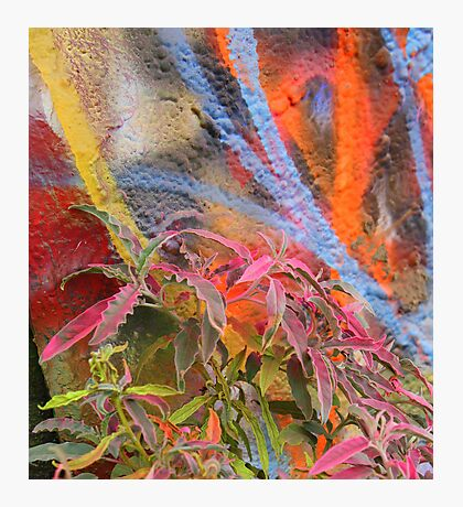 Cadillac Ranch Abstract with Painted Plant Photographic Print
