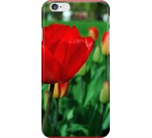 Red tulips. iPhone Case/Skin