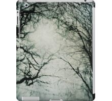 Bleak Winter iPad Case/Skin