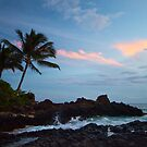 Makena Cove at Sunset, Maui by Barb White