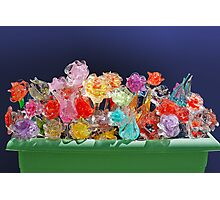 Flower-box with glass flowers Photographic Print