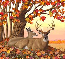 Whitetail Deer Autumn Maple Tree by csforest