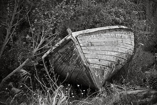 Derelict by Christine  Wilson Photography