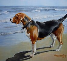 Beagle Sea View by Anne Zoutsos