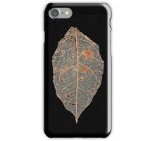Skeleton Leaf iPhone Case/Skin