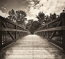 Tiny Bridge by Arkadiy Chernov