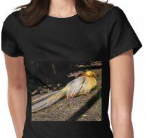 Golden Pheasant at Abbotsbury , Dorset UK Womens Fitted T-Shirt