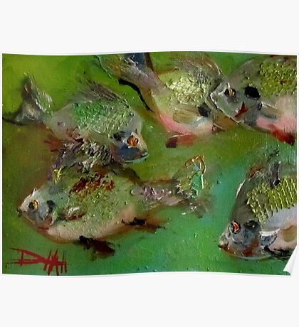 Cubby Blue Gills Poster