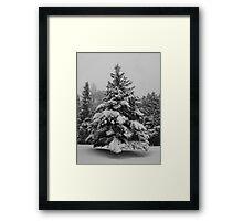 Christmas Card Collection #4 Framed Print