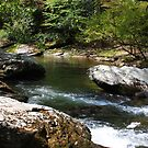 Mountain Stream I - GSM Tennessee by Tony Wilder