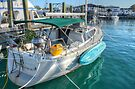 Suspended Plant, BBQ... Feeling just like Home on this boat in Nassau, The Bahamas by 242Digital