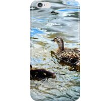 Mother Duck and Ducklings iPhone Case/Skin