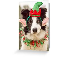 Elf Collie Greeting Card