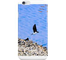 House Martin iPhone Case/Skin
