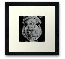 Alpaca in black and white Framed Print