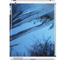 The Coldest Winter in a Hundred Years iPad Case/Skin